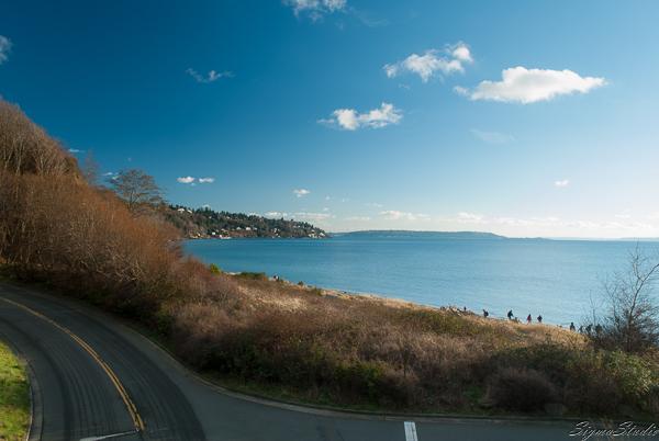 走到这里就能看到大海和沙滩了,下面的公路想来就是回去时应该 follow 的 Discovery Park Drive Way 了吧。
