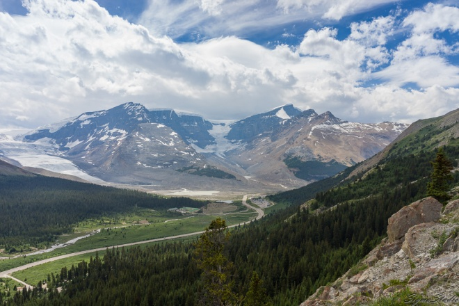 Columbia Icefield from Wilcox Pass
